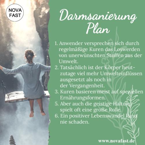 Darmsanierung-Plan